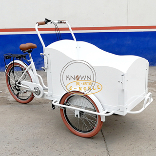 Electric Adult 3 Wheels Cargo Bike Children Transport Tricycle Mobile Snack Food Cart for Sale