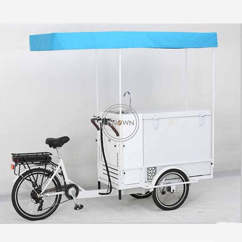 Mobile Electric Ice Cream Cargo Bike Best Adult Tricycle With High Capacity Freezer for Sell Cold Drinks Such As Cola Beer