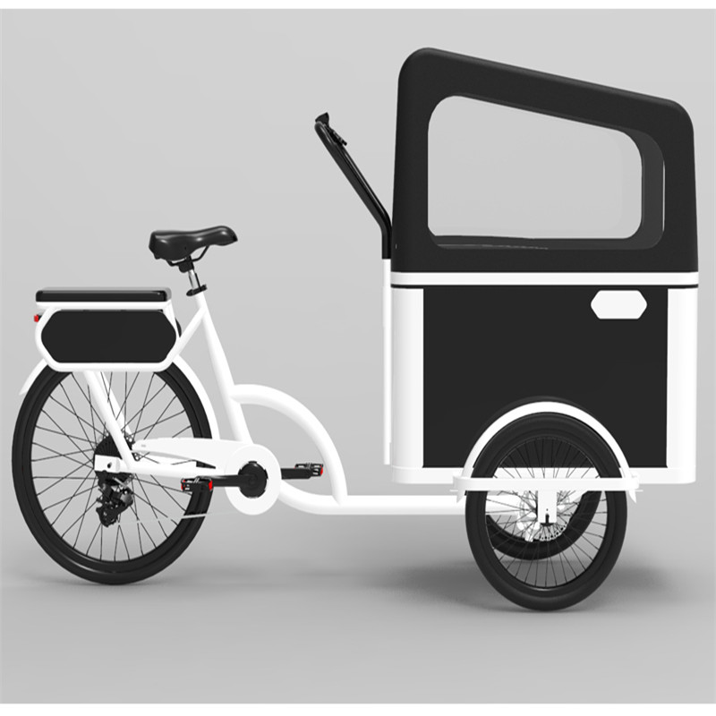 2021 New Designed Electric Or Pedal 3 Wheels Cargo Bike for Carrying Kids Or Pets for Sale
