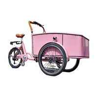 Pedal Electric Cargo Bike Pink Color Dutch Adult Tricycle Street Vending Cart for Sale Customize