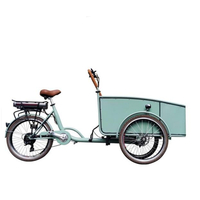 Pedal Electric Dutch Adult Tricycle Blue Color Cargo Bike Street Vending Cart for Sale Customizable